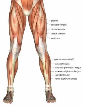 co na bolest kolene